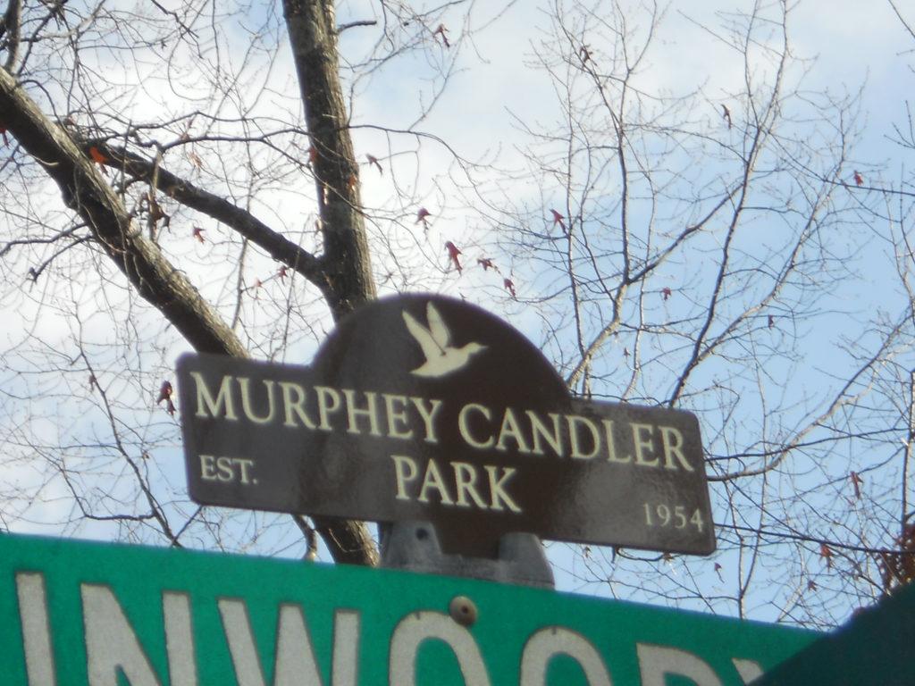 Candler Park Sign